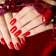 Close up on beautiful female hands with sexy red manicure. — Stock Photo