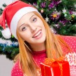Beautiful young woman with Santa hat smiling offering you a Christmas present. — Стоковая фотография