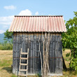 Old shed in a garden. — Stock Photo