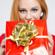 Beautiful young woman holding in front a big Christmas present. — Stock Photo #35882359
