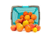 Blue plastic shopping basket full of fruits. — Stock Photo