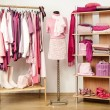 Dressing closet with pink clothes arranged on hangers and shelf, outfit on a mannequin. — Stock Photo #45401955