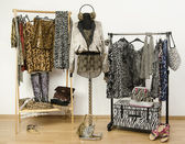 Dressing closet with animal print clothes arranged on hangers. Cheetah print fall outfit on a mannequin. — Stock Photo