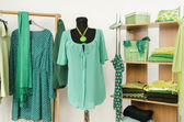 Dressing closet with green clothes arranged on hangers and shelf, outfit on a mannequin. — Stock Photo