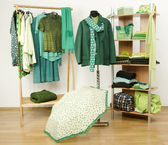 Dressing closet with green clothes arranged on hangers and shelf. — Stock Photo