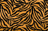 Brown and black tiger pattern. Fur animal print as background. — Stock Photo