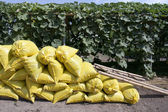 Organic fertilizer bag in garden — Stock Photo