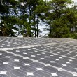 Solar cell in forest — Stock Photo