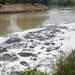 Water pollution in river — Stock Photo
