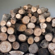 Stack of chopped fire wood — Stock Photo #13594849