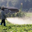 Farmer spraying pesticide on soy field — Stock Photo
