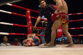 Knockout ,Thai kick boxing — Stock Photo