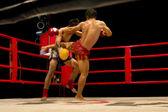 Muay thai ou thai boxe — Fotografia Stock
