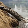 Stock Photo: Water pollution in river