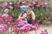 两个接吻娃娃粉红色郁金香花园中. — 图库照片
