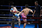 Thai Boxing or Muay Thai — Stock Photo