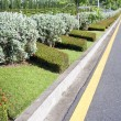 Stock Photo: Beautiful road with garden