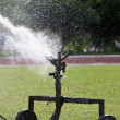 Stock Photo: Sprinkler head watering grass