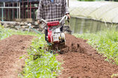 Small rotary cultivator working in garden — Stock Photo