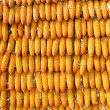 Corns for animal feeding — Stock Photo