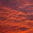 Red sky in morning — Stock Photo #37613053