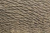Textura de pele de elefante' — Foto Stock