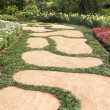 Stock Photo: Garden paths