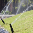 Sprinkler head watering in park. — Stock Photo