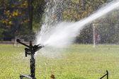 Sprinkler head watering the grass in sport field. — Stock Photo
