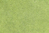 Green golf grass for  background — Stock Photo