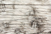 Wood texture. background old panel — Stock Photo