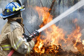 Firefighters helped battle a wildfire — Stock Photo
