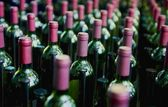 Nice several rows of wine bottles — Stock Photo