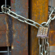 Lock with chain on rusty gate — Stock Photo #33607377