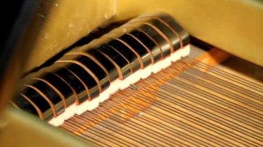 Kuyruklu piyano — Stok video