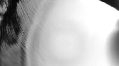 Ink splatter on white. Ink Bleed Bloom. Black expanding — Stock Video