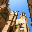 Angle view of Cathedral in Barcelona — Stock Photo
