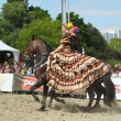Unidentified riders in Spanish dresses show Carrousel composition during EuroFeria Andaluza - Stock Photo