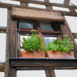 Window of fachwerk building in Alsace, France - Stock Photo