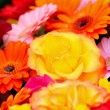 Natural background with spring flowers with shallow dof — Stock Photo