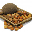 Foto de Stock  : Nuts from different countries in artistray