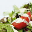 Close-up image of salad with tomato and mayo — Stock Photo