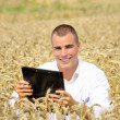 Agriculture specialist in the field under bright sun — Stock Photo
