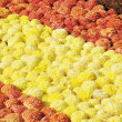 Flower Carpet - Stock Photo