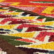 Flower Carpet on Grand Place in Brussels - Stock Photo