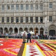 Stock Photo: Unidentified volunteers do final touch on Flower Carpet