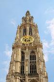 在安特卫普背后的历史建筑物的圣母大教堂的塔 — 图库照片