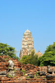 Tower in Ayutthaya, ancient capital of Thailand — Stock Photo