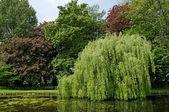 Park Sobieski in Brussels, Belgium — Stock Photo