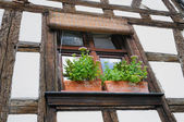 Window of fachwerk building in Alsace, France — Stock Photo